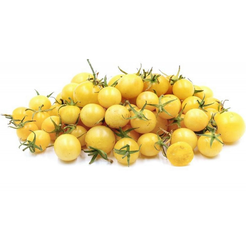 Graines de tomate Cerise Blanche (Snow White Cherry) Seeds Gallery - 3