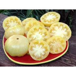 Sementes de tomate Maravilha Branca (White Wonder) Seeds Gallery - 3