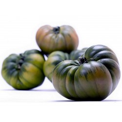 Semillas de tomate RAF  - 7