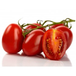Sementes de tomate Roma