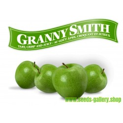 Granny Smith Apple Frön (Malus sylvestris)
