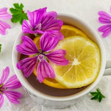 Wilde Malve Samen Heilpflanze (Malva sylvestris)