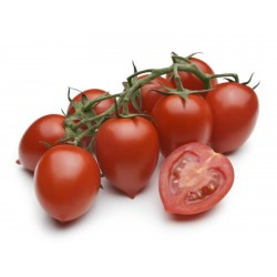Piccadilly Plum Small Vine tomato Seeds  - 1