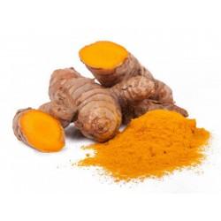 Gurkmeja Spice - Malet (Curcuma longa)  - 1