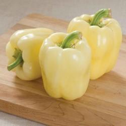 Vita paprika frön BELINDA  - 2