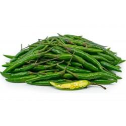 Semillas de chile verde...