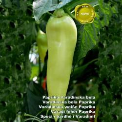 Семена перца Varadinska Белый