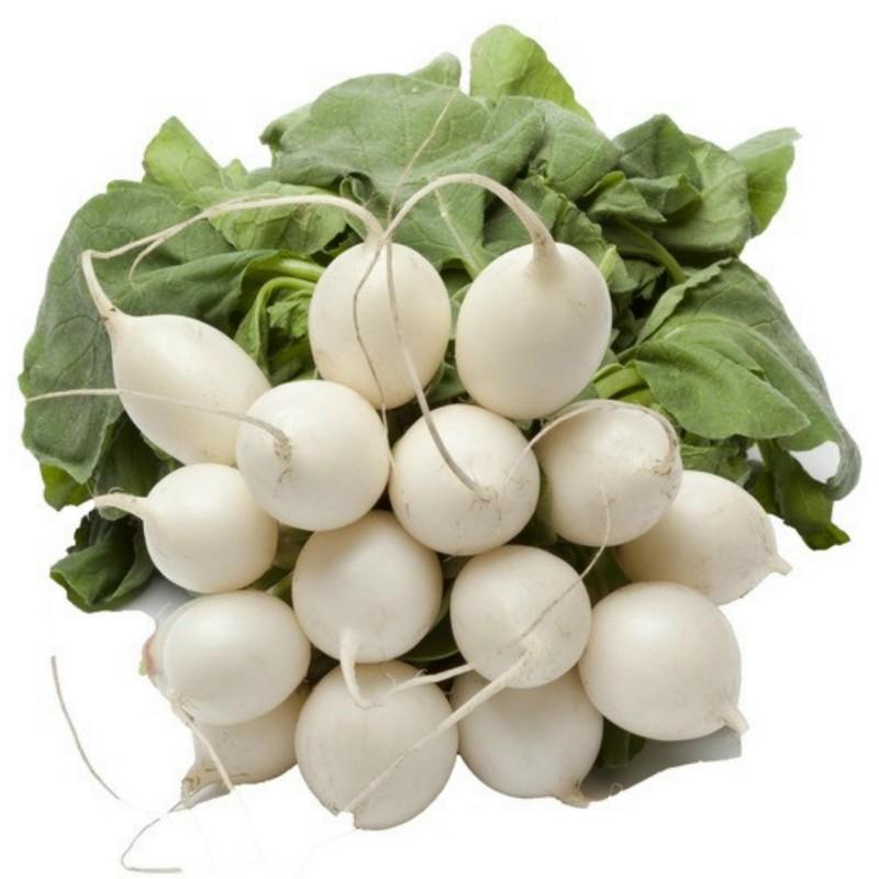 White Round Winter Radish Seeds  - 3