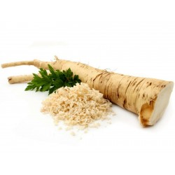 Tatar horseradish - Katran Seeds (Crambe tataria) Seeds Gallery - 5