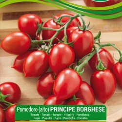 Sementes de tomate PRINCIPE BORGHESE  - 1
