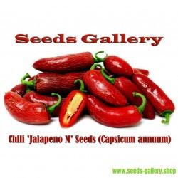 Σπόροι Τσίλι πιπέρι 'Jalapeno Μ' (Capsicum annuum)