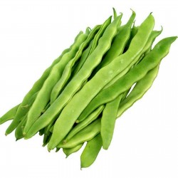 Jewish Helda pole bean seeds