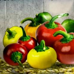 Sementes de pimentão cereja arco-íris  - 2