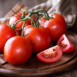 Seme paradajza Gružanski Zlatni  - 1