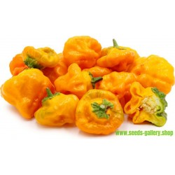Semillas Pimiento Jamaican Hot Yellow