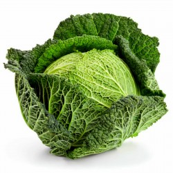 Savoy Cabbage Seeds Vertus  - 3