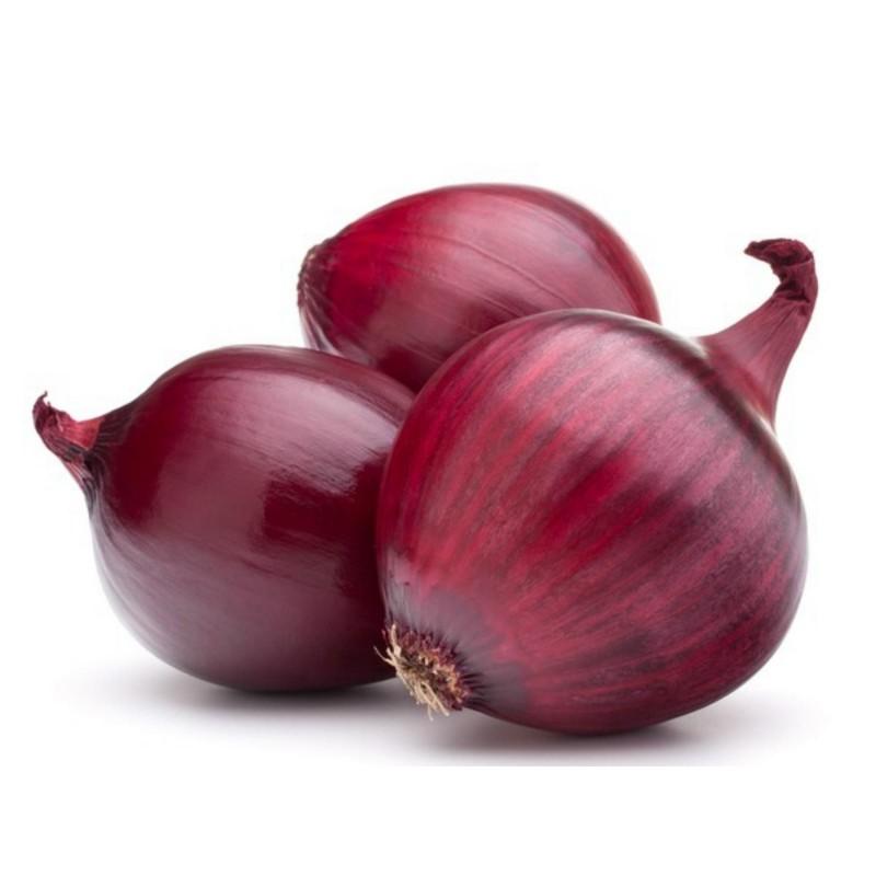Semillas de cebolla rojo Brunswick  - 2