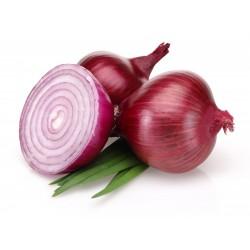 بذور البصل الأحمر برونزويك  - 1