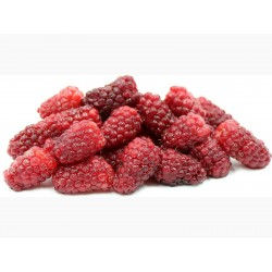 Tayberry fruit seeds (Rubus fruticosus)  - 3
