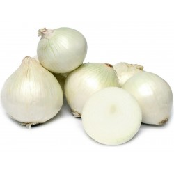 Semillas de Cebolla White Lisbon  - 1