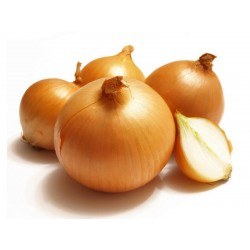 Семена голландского желтого лука  - 1