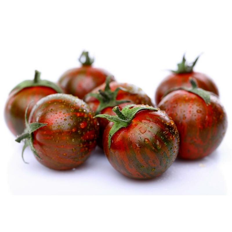ARTISAN PURPLE BUMBLEBEE Tomaten Samen Seeds Gallery - 1