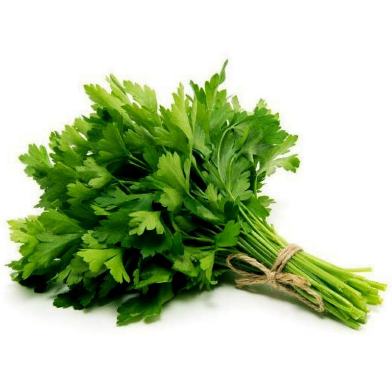 Parsley Seeds Italian Giant Flat Multiannual  - 1