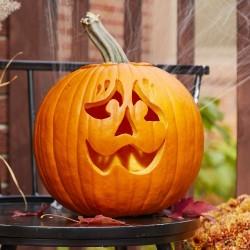 XXL Halloween pumpafrön,...