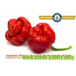 Trinidad Moruga Scorpion Seeds Worlds Hottest