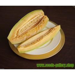 Σπόροι εξωτικών Μπανάνα Πεπόνι - Cantaloupe