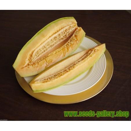 Semi di Melone Banana - Melone Gondola ( mezzo metro)