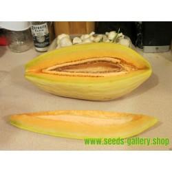 Semillas de banano melón Cantaloupe