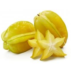 """""""Stjärnfrukt"""" Frön Averrhoa..."""